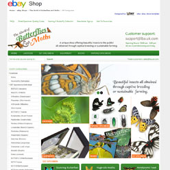 butterflyandmoths-ebay-design