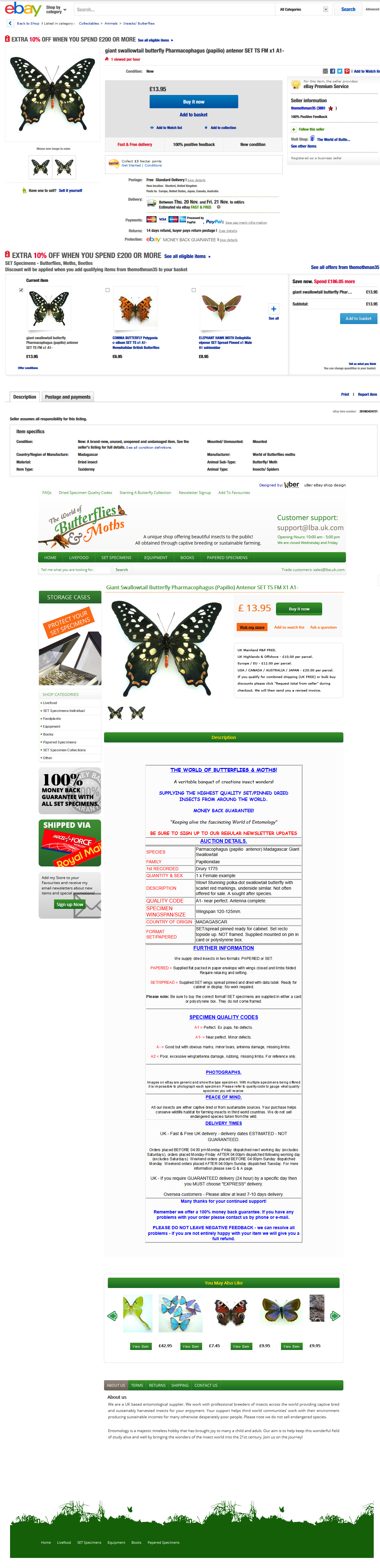 butterflyandmoths-ebay-shop-item-template-design